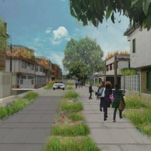 landscape-scheme-Colombia-6